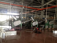 Drying section plant in vietnam